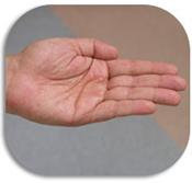 hand3_pic.jpg
